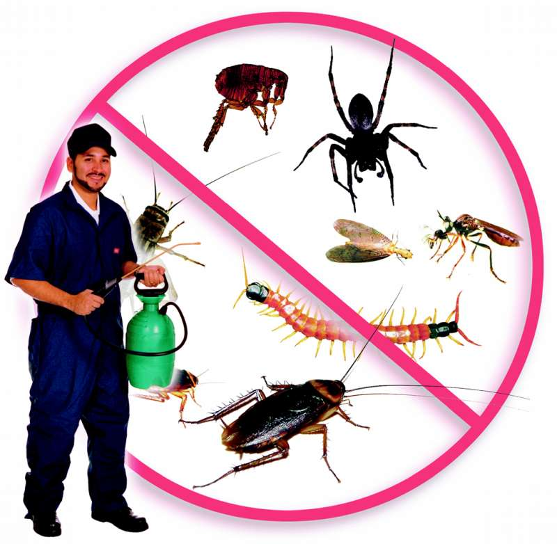 pest control expert in Drewryville